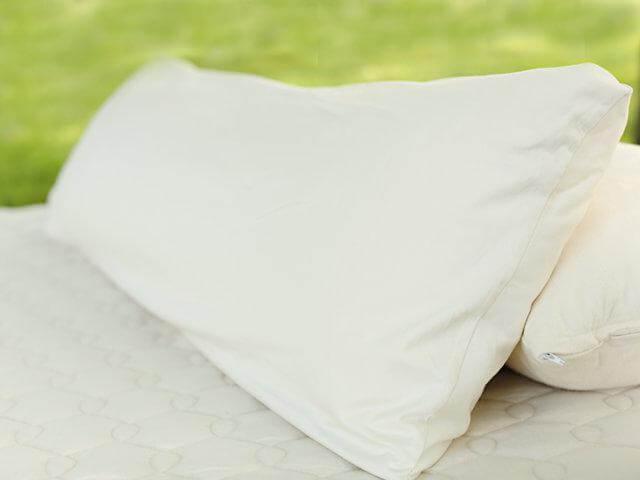 Organic Shredded Latex Body Pillow