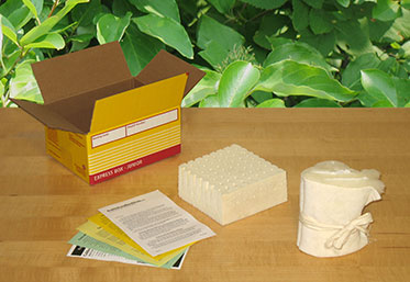Get Your FREE Latex Samples