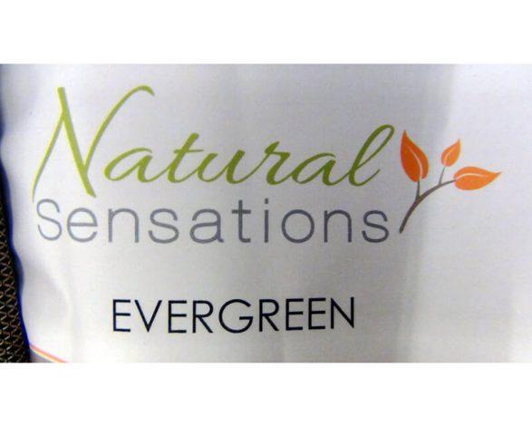 Natural Sensations Evergreen