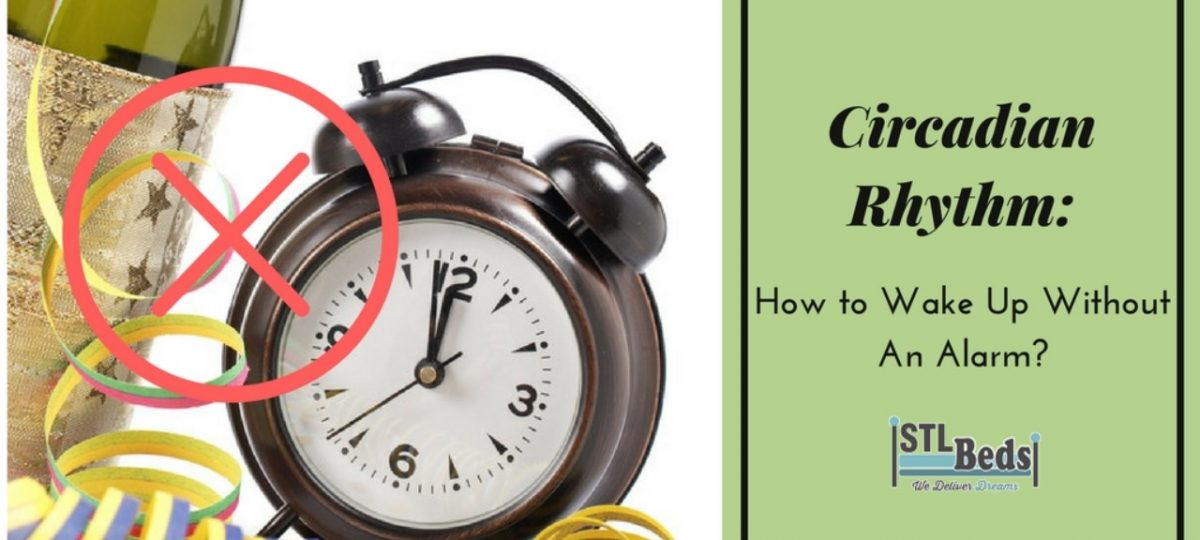 Circadian Rhythm: How To Wake Up Without An Alarm?