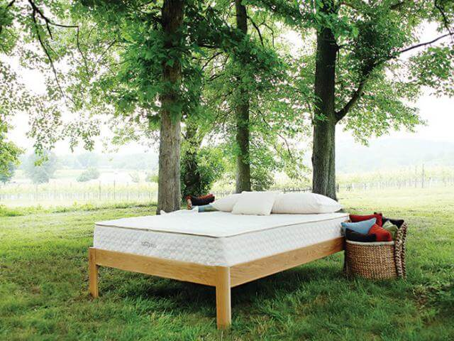 How Will You Ever Be Able To Afford Organic Bedding?
